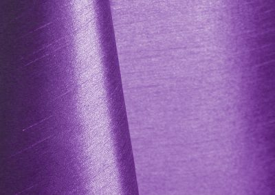 Purple 027