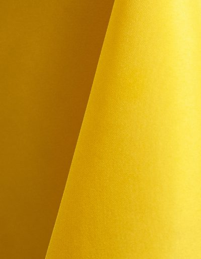 Lemon 104